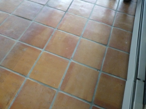The terra-cotta floor tiles are lovely and feature rose and gold tones, which I'm hoping to incorporate into the room's design.