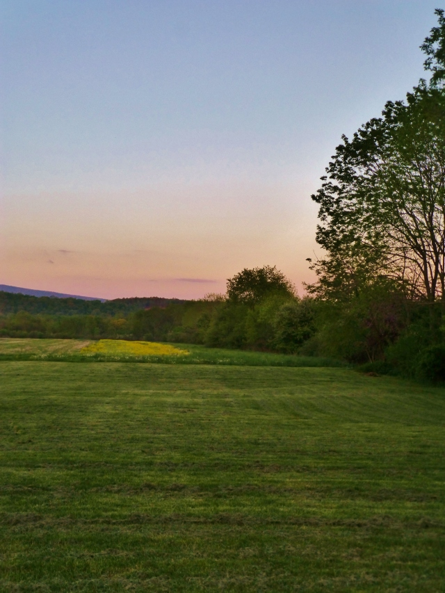 Sun setting over the hills and fields behind the guest cottage.  Perfect!