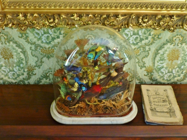 Did you spot this amazing example of Victorian Bird Taxidermy on top of the piano?  The colorful birds are preserved under a glass dome with a marble base.  This too was a popular Victorian interior decoration and is still very collectible today.