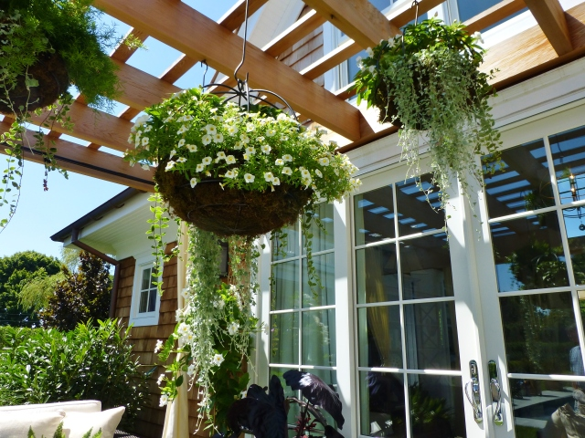 The hanging baskets are planted in moss suspended from wrought iron hooks.  I love the dripping, trailing plants and small white flowers.  Understated and opulent at the same time!  I also love how the designer chose to hang them in a central location at varying heights.  They are treated almost like a chandelier, placed above the round coffee table ottoman.