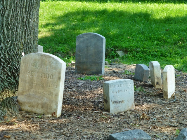With engraved names like Fido, Little Nelly, Fanny, and Ponto, these Victorian tombstones pay tribute to cherished family pets.