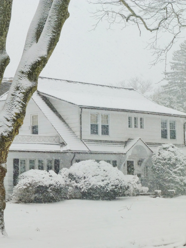 My across the street neighbor's house is so picturesque in an elegant, white-on-white kind of way.