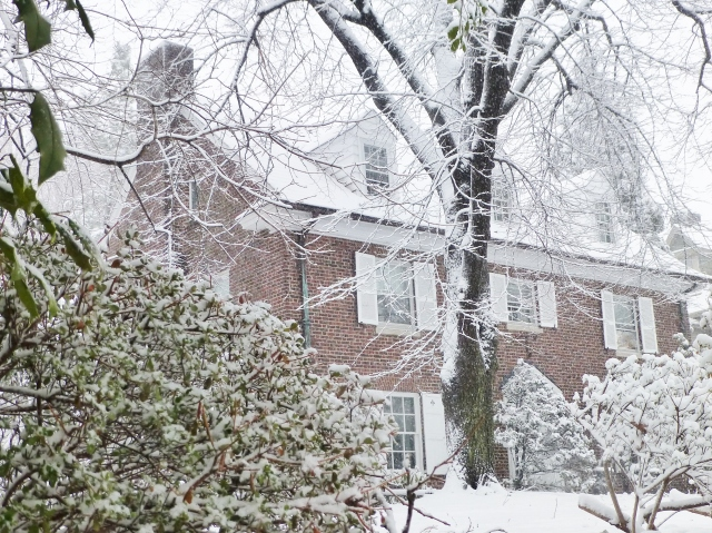 This beautiful red brick colonial stands out in its white surroundings.