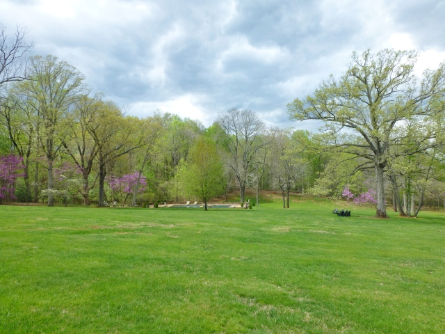 The back lawn slopes down to the elegant pool area.  It was early spring the day we visited and many trees were blooming, while others were just coming into leaf.