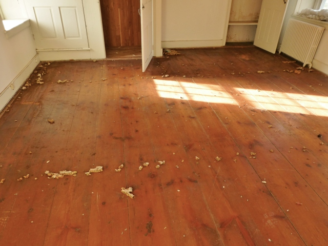I'm sure you've probably noticed the antique pine flooring throughout the bedroom. My space is in the historic portion of the 2016 Bucks County Designer House. The original farmhouse dates to 1860. Obviously the floors were carpeted, so there are many staples and bits of foam padding everywhere, along with the tacking strips around the perimeter. Once these are removed and the floor is cleaned and polished, the floor should be very pretty, albeit a bit rustic.