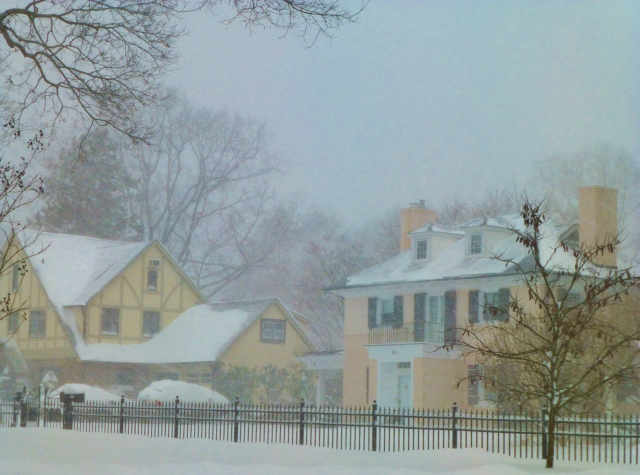 These two pastel beauties are look cozy amidst the blizzard.