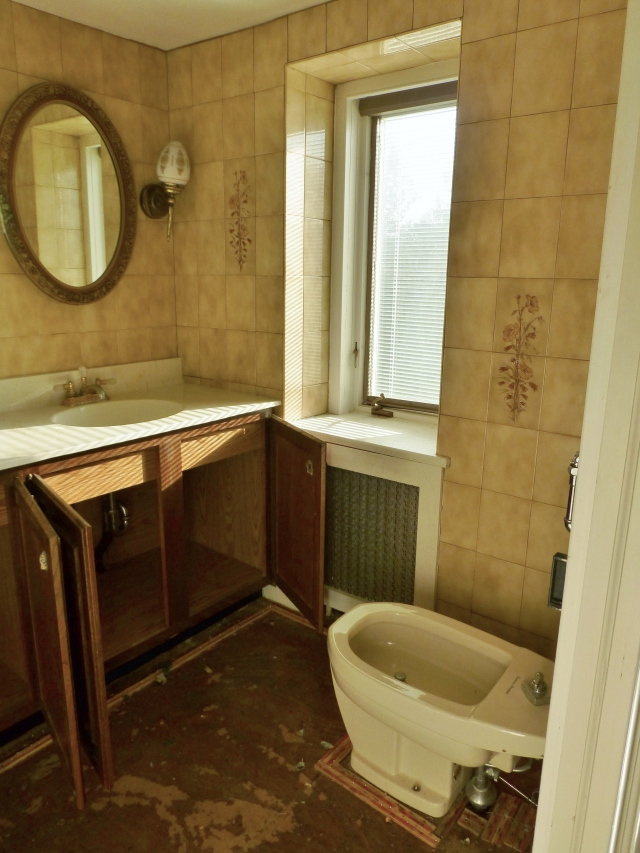 When you look to the right, you'll notice an old bidet, which will be removed from the space (thank goodness!). Nearby is a small window. I have special plans for this space!