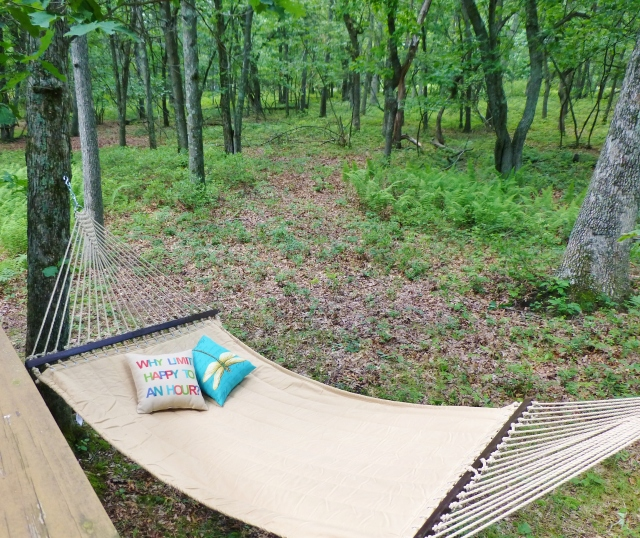 Hammock at The Shack Southern Poconos Jim Thorpe PA Woods Forest Kristine Robinsons Interiors (2)